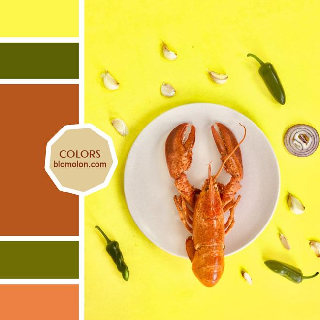 variedad_en_color_moodboard_74