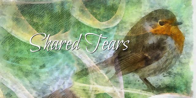 Sweet Sorrow and Shared Tears - Psalm 25
