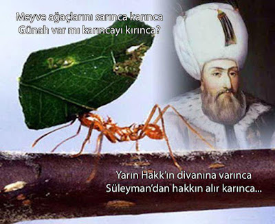Ebussuud, günah, güzel hikaye, Hakk, Kanuni Sultan Süleyman, karınca,