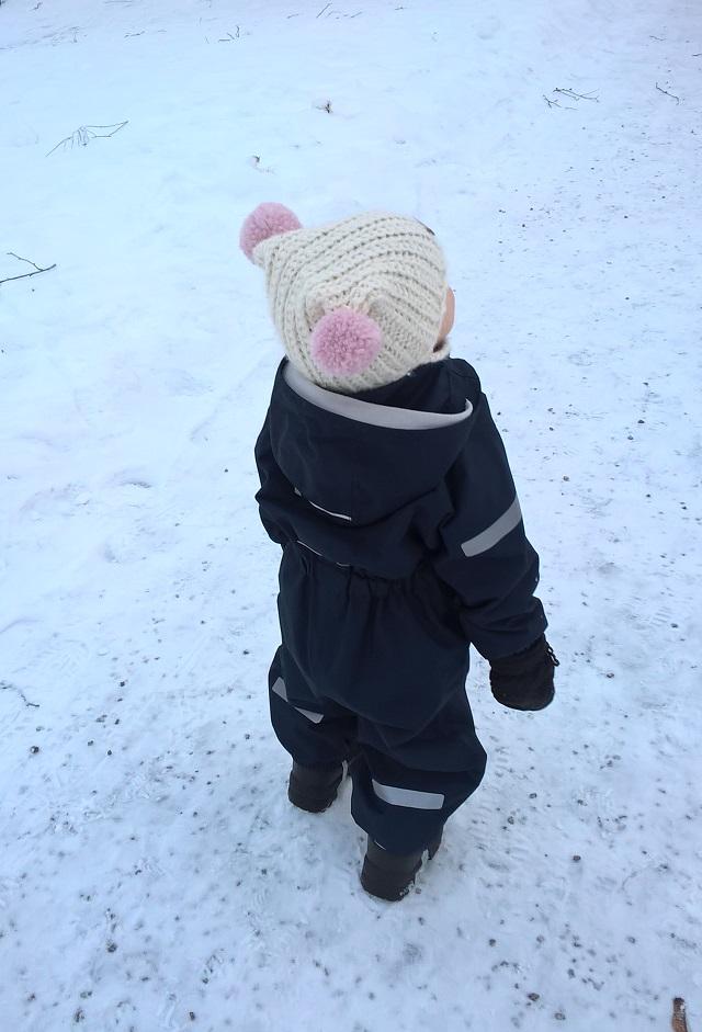 Kuorihaalari talvella