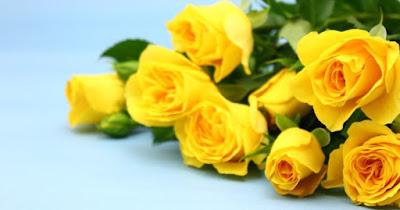 父の日に贈るのは黄色いバラやひまわり