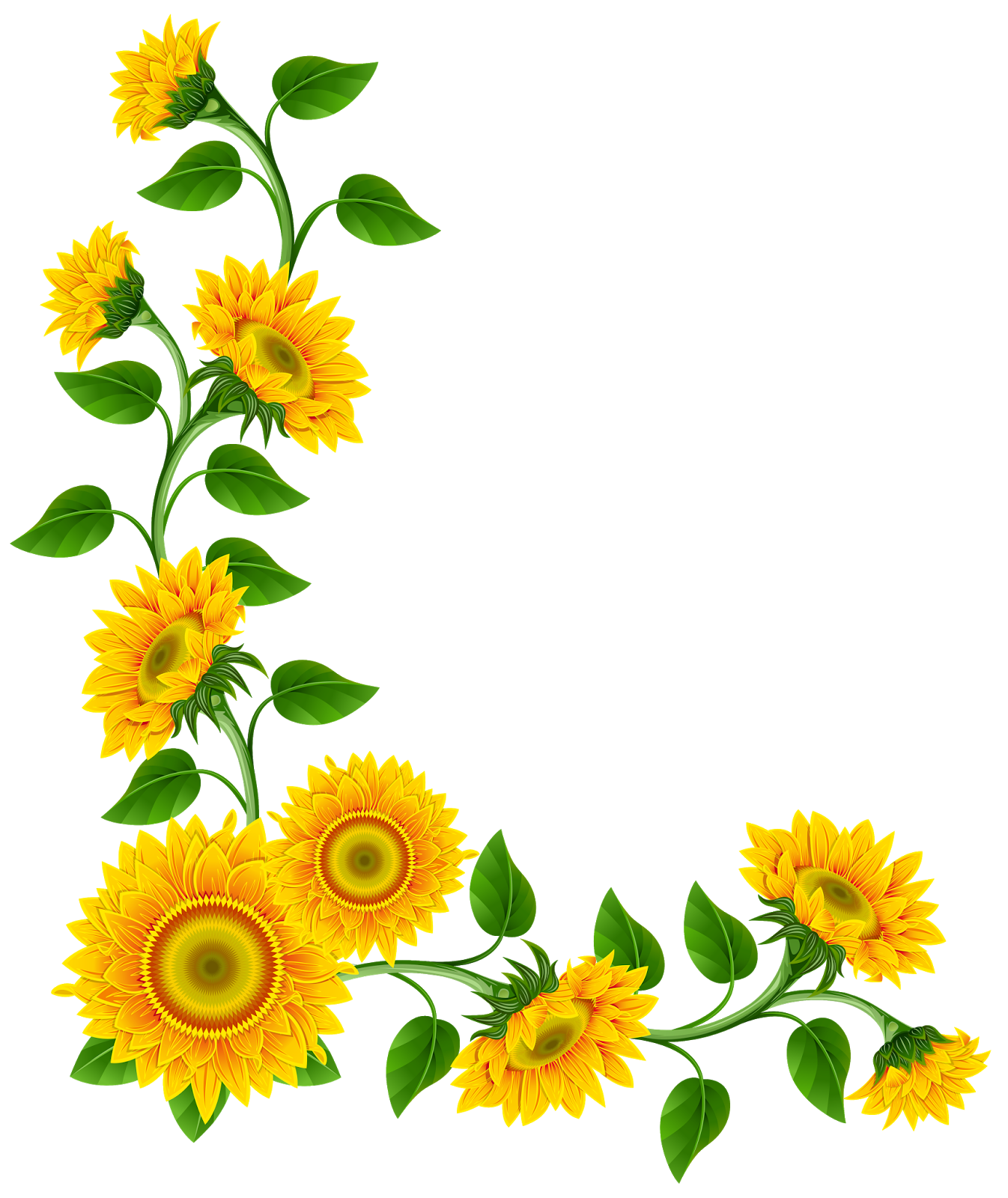 clip art borders sunflowers - photo #4