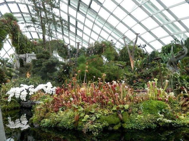 visite de Gardens by the Bay Singapour
