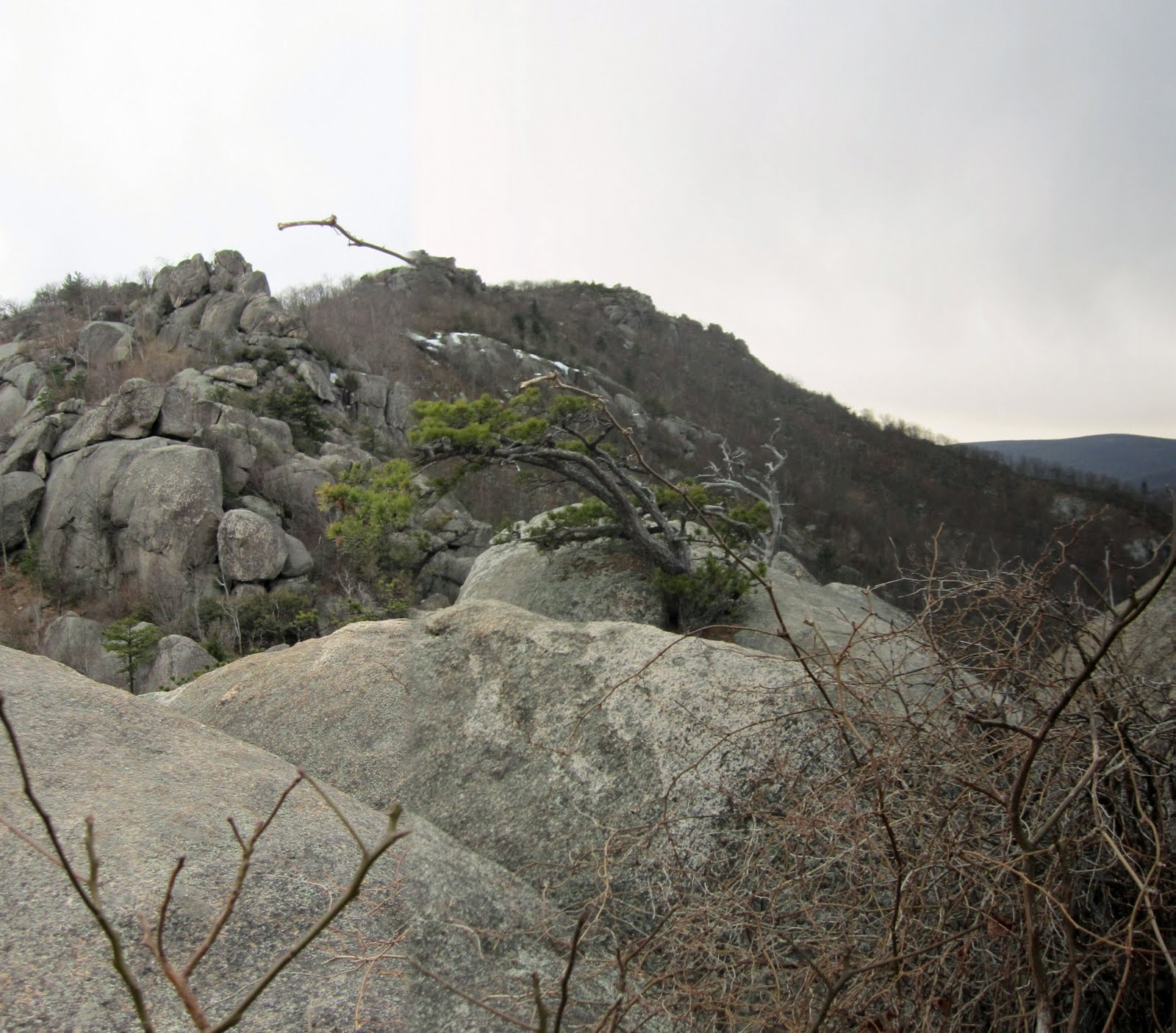 Old Rag Mountain Hikes/Patrols By RSL: Early Spring Fever