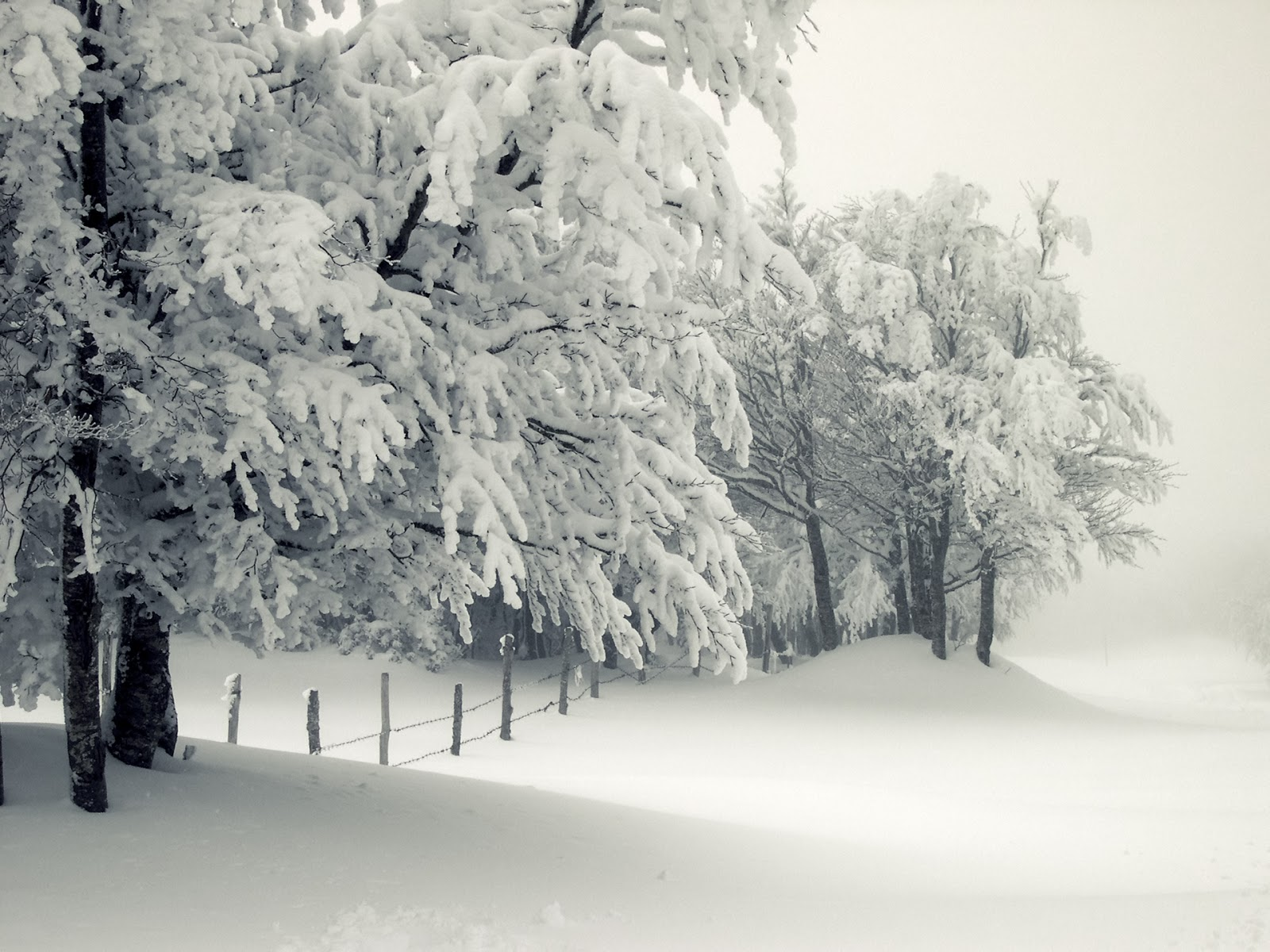 snow trip packing list