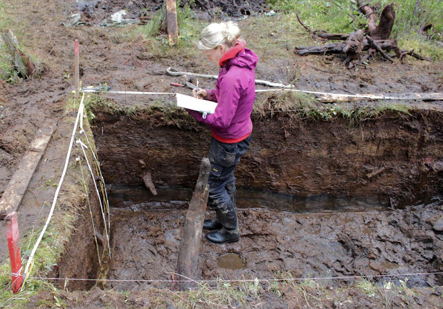 Finland's wetlands are an internationally significant archaeological repository