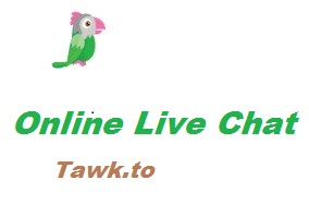Website Me Live Chat System Kaise Integrate Kare