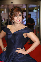 Payal Ghosh aka Harika in Dark Blue Deep Neck Sleeveless Gown at 64th Jio Filmfare Awards South 2017 ~  Exclusive 130.JPG