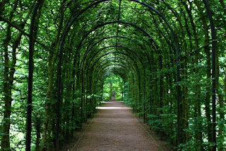 tunnel, tunnel of plants, promenade, plant tunnel, garden, away, plant, nature, green, avenue, dark, concluded anholt, anholt, isselburg,