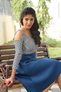Telugu Actress Roshini Prakash Stills Short Dress at Saptagiri Express Release Press Meet  0121.JPG