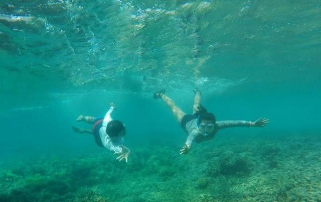 Keindahan Bawah Laut yang Memmesona