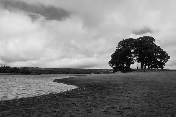 Lake (BNW)