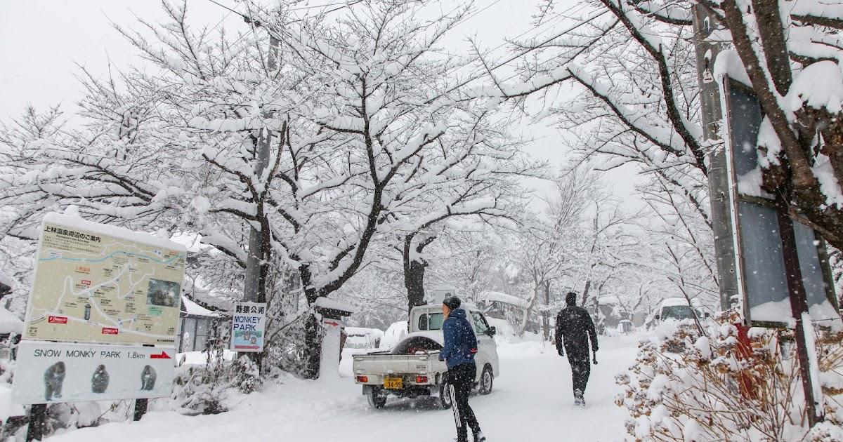 2017冬季日本長野東京旅遊行程總整理 (2017.01.11~2017.01.21)