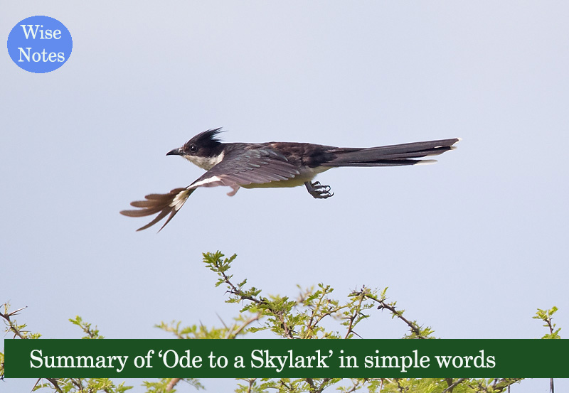 ode to a skylark analysis