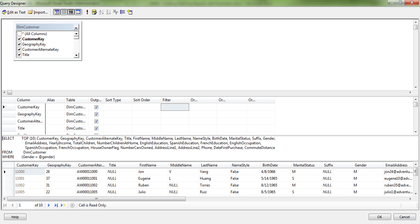 SSRS 4 - Creating RealTime Reports with Parameters | CatchCode