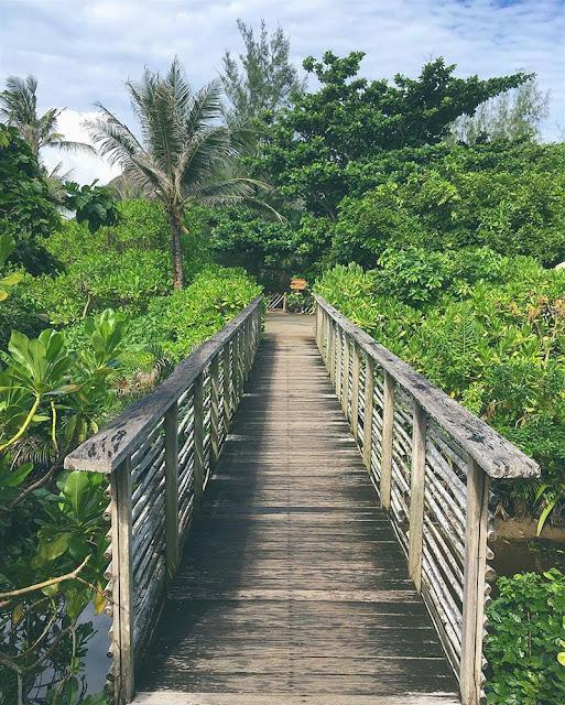 Tham quan Vườn Quốc Gia Côn Đảo