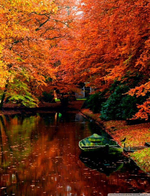 Landscape Autumn Hd Wallpaper Wallpapers Gallery