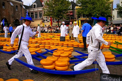 excursie-alkmaar-olanda