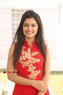 Telugu Actress Priyanka Jain Stills in Red Dress at Amazing Arts Production no 1 Movie Opening  0019.JPG