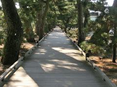 三保の松原・神の道
