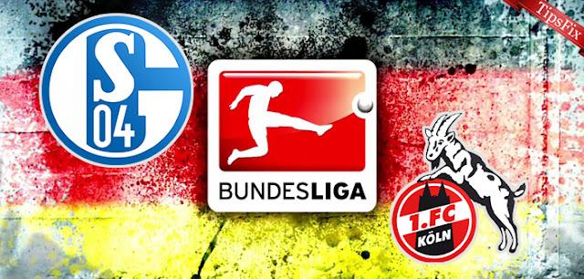 Schalke 04 vs FC Cologne Full Match & Highlights 02 December 2017
