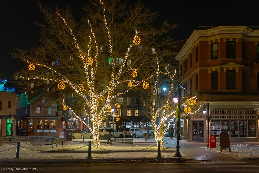 Portland, Maine USA January 2019 photo by Corey Templeton of holiday winter yellow decoration lights in trees at Longfellow Square at night.