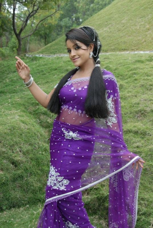 Tamil Actress Padmini Beautiful Purple Saree Photoshoot