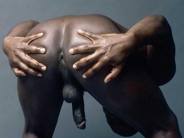 Negro Dotado Rabudos