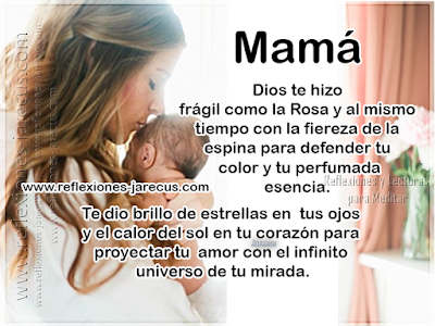 Mamá Dios te hizo con la fragilidad de la Rosa y al mismo tiempo con la fiereza de la espina para defender tu color y tu perfumada esencia.