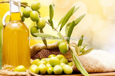 160 Manfaat Buah Zaitun Bagi Kesehatan Berdasarkan Kandungannya
