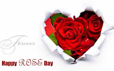 Happy Rose Day 2017 Photos