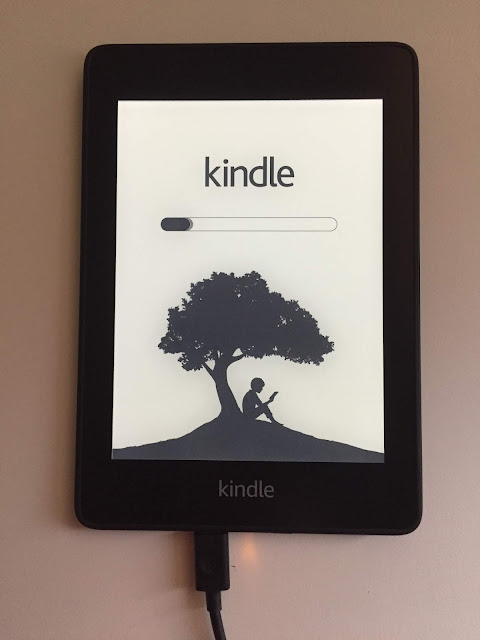 Kindle Paperwhite 2019 review