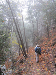 Gabrielino Trail, upper West Fork
