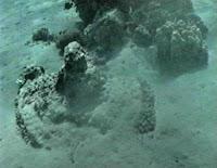 Resultado de imagem para egipcios mar vermelho