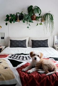 La decoración del dormitorio
