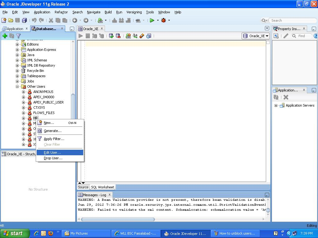 Madison : Oracle developer 11g tutorial
