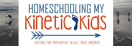 Homeschooling My Kinetic Kids