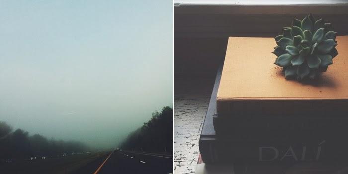 TINA CRESPO • PHOTOGRAPHY & STORIES
