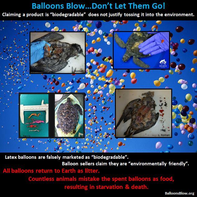 Balloons Hundreds Islands