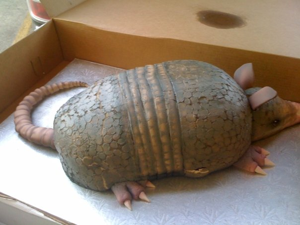 Image Of Armadillo Cake