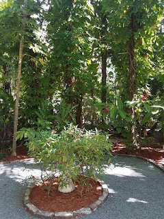 Hemingway House Gardens
