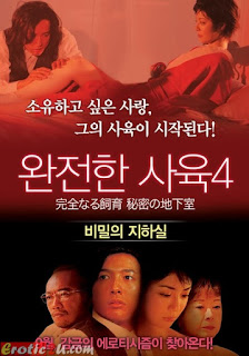 Perfect Education 4 – Secret Basement (2003)