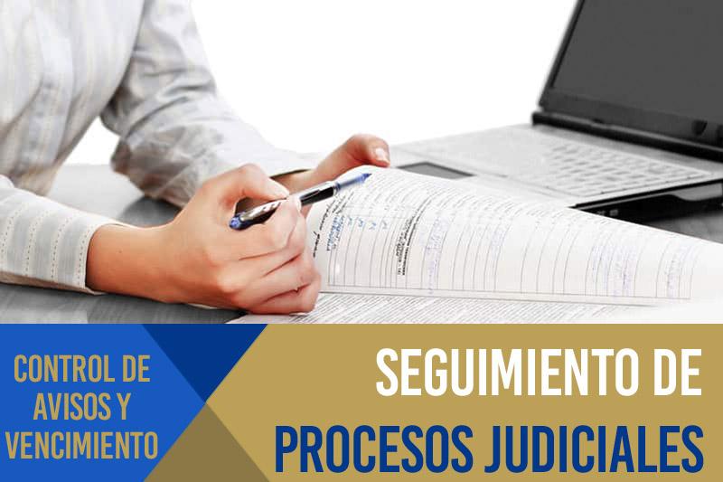 Supervisión, seguimiento e impulso del proceso judicial