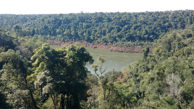 the Iguazu jungle- a few km from the falls
