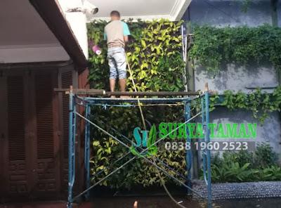Jasa Pembuat Vertikal Garden di Bogor - Tukang Rumput Bogor