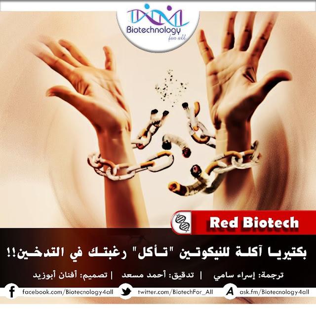 بكتيريا تُنهي مُعاناة المُدخِّنين
