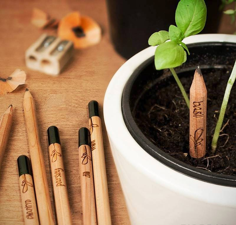 Sprout | Pencil that Grows