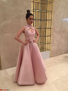 Tamannaah Bhatia looks radiant in a Mark Bumgarner gown for the Vanitha Awards 2017 ~  06.jpg