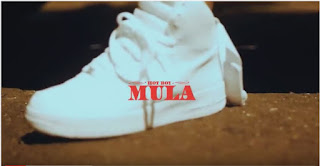New Video: Hotboy Mula – Pain