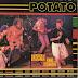 POTATO: 'punky reggae party banda'